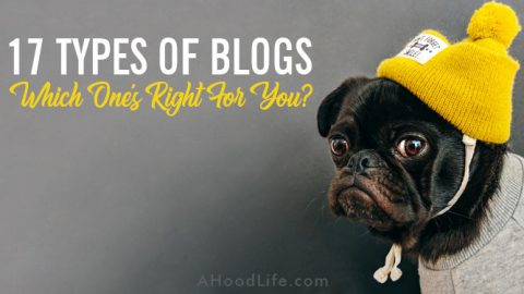 Types Of Blogs: Want to start a blog? There are many types of blogs. Your talents and insights will earn more money with one type blog over all others. #ahoodlife #blogtips #blogging #bloggingtips #bloggingforbeginners #startablog